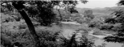 Pogled na rijeku Vrbanju